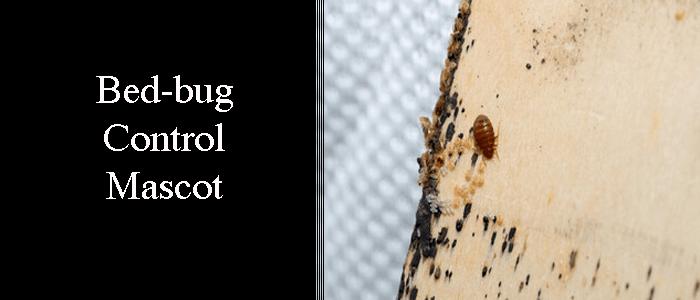 Bed Bug Control Mascot